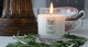 Cedarwood & Rosemary Container Candle