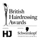 British Hairdressing Awards, 2013