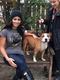 Celebrity meets dog abandoned