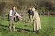 Planting damson orchard