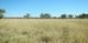 Ecological farming in Australia