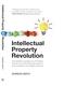 Intellectual Property Revolution