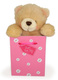 Just For Your Bear, RRP £4.99